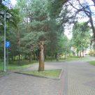 Budowa oświetlenia parkowego w Woli Uhruskiej_V2-001