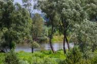 Rzeka Bug w Orchówku