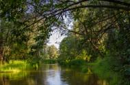 Rzeka Bug w Kuzawce